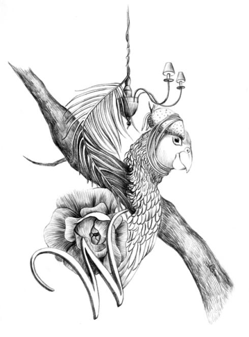 amalia mora (7)